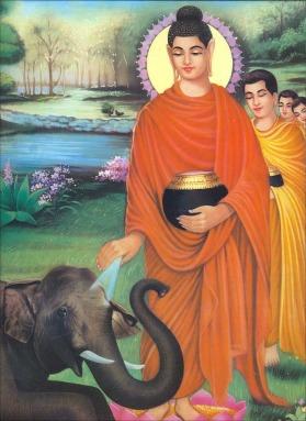 buddha28_med