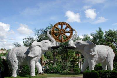 gajah_putih_